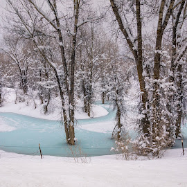 Frosty Blue Pool by Chad Roberts - Nature Up Close Water ( water, winter, cold, pool, snow, frozen, pond )