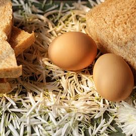 Egg & Bread by Hendi Syarifuddin - Food & Drink Ingredients ( wheat, eggs, breakfast, bread, breads, egg )
