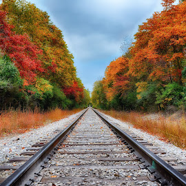 Autumn  by Brian Hollars - Transportation Railway Tracks