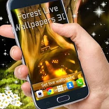 Forest Live Wallpapers 3D