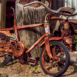 TB-0211-02-16 by Fred Herring - Transportation Bicycles