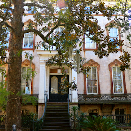 by Barbara Suggs - City,  Street & Park  Historic Districts