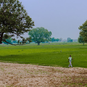 Green by Adityendra Solanki - Landscapes Prairies, Meadows & Fields