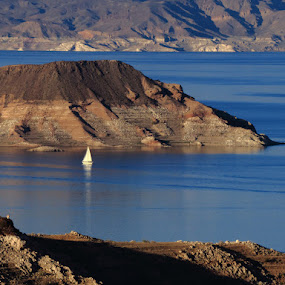 Lake Mead by Michele Whitlow - Landscapes Waterscapes ( lake mead, colorado river, nevada, water level, arizona, sailboat )
