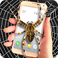 Spider on screen prank APK for Kindle Fire