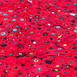 Field of knitted poppies by Chrissy Almaraz - Artistic Objects Other Objects