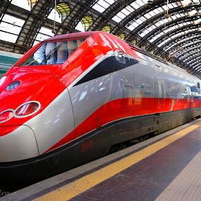 The Red arrow by Alessandra Antonini - Transportation Trains ( red, station, train, lines, transportation,  )