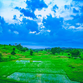 by Nayan Shaurya - Landscapes Prairies, Meadows & Fields ( clouds, farm, sky, greenery, farmland, landscape )