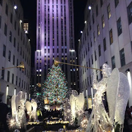 christmas tree at rockefeller center by Theresa Hughes - Public Holidays Christmas (  )