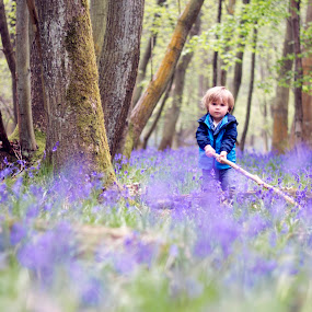 In The Bluebells with a Stick by Claire Conybeare - Chinchilla Photography - Babies & Children Child Portraits ( kids in the summer, england, kids playing in summer, spring colorful flowers, beautiful, sun coming through wildflowers, forest, toddler, woods, spring, boy, bluebells, pwcflowergarden-dq )