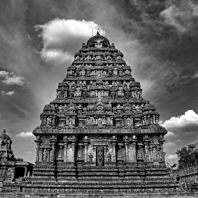 Darasuram Temple by Muthu Kumar - Buildings & Architecture Places of Worship ( temple, darasuram, black & white, india, pwcbuilding, tamilnadu )