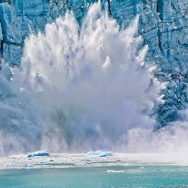 Glacier Bay National Park by James Wayne - Landscapes Waterscapes ( water, iceberg, glacier, blue, ice, glacier bay national park, calving glacier )