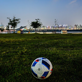 Hangang park by Iordan Daniel Teodorescu - City,  Street & Park  City Parks ( ball, park, grass, night, river )