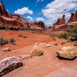 by David Forrest - Landscapes Deserts ( hdr )