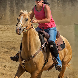 Barrel Racer 7 by Joe Saladino - Sports & Fitness Other Sports ( girl, barrel race, horse, race, competition )