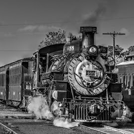 Colorado narrow gauge railroad by Ron Olivier - Black & White Objects & Still Life ( colorado narrow gauge railroad,  )