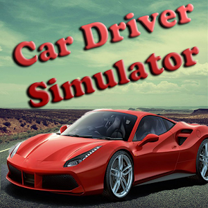 Car Driver Simulator