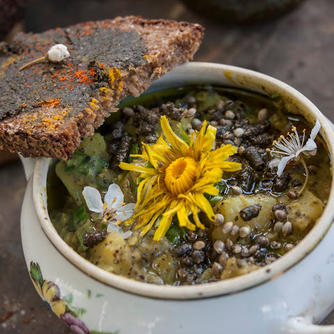Vegan Lentil Stew with Hemp and Dandelions