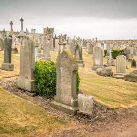 Saint Andrews Ancient Cemetery by Jennifer  Loper  - City,  Street & Park  Cemeteries ( tombstones, cemetery, st. andrews, cathedral, scotland )