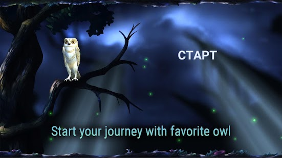 Owl's Midnight Journey- screenshot thumbnail