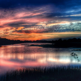 Color Imagination by Glenn Forman - Landscapes Sunsets & Sunrises ( reflection, marsh, travel, beauty, landscape, wildlife sanctuary, pretty, sun, no filter, sky, nature, everglades, pink, sunshine, evening, water, clouds, orange, beautiful, cloudscape, atardecer, lake, dusk, florida everglades, red, vacation, vscocam, blue, wetlands, sunset, sundown, summer, trees, cloud, tramonto, view )