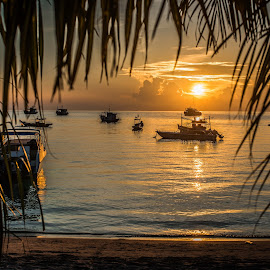 Koh Tao by Terje Jorgensen - Landscapes Travel