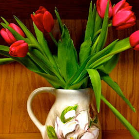 The Tulips by Chris Young - Instagram & Mobile iPhone ( vase, red, flowers, portrait )