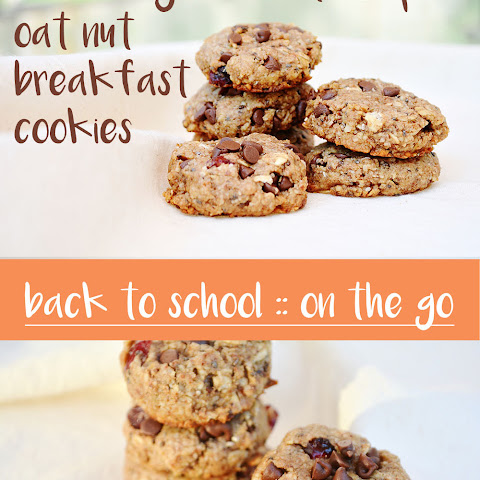 Cranberry Chocolate Chip Breakfast Cookies