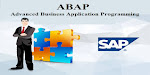 best sap abap institute in hyderabad