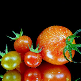 Tomatoes  by Asif Bora - Food & Drink Fruits & Vegetables (  )