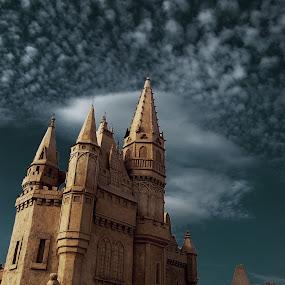 Sand Castle by Димитър Чобанов - Buildings & Architecture Statues & Monuments ( sand, building, castle, fest )