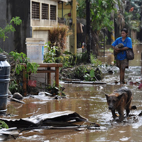 MAN'S PRIZED POSSESSIONS by Dominic Malanog - News & Events World Events ( sendong, typhoon, flash flood )