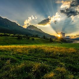 field sunset by Mihai Bratu - Landscapes Sunsets & Sunrises ( field, mountains, sunset, summer, romania )