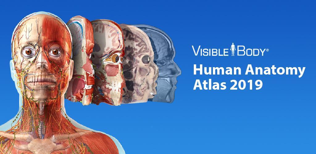Human Anatomy Atlas 2019 Complete 3d Human Body 2019030 Apk