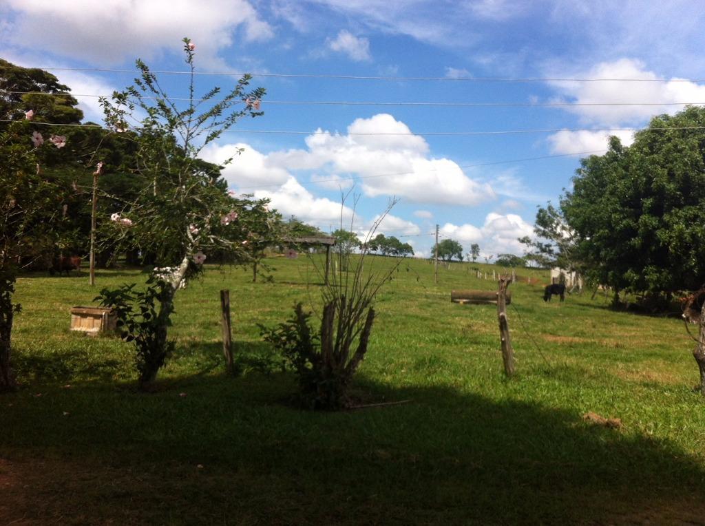 Itapetininga - Fazenda com 56 Alqueires Paulista no Turvo dos Colaços para Venda.