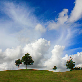 Windows XP by Snehasis Daschakraborty - Landscapes Cloud Formations