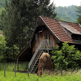 Only one house in the meadow by Milena Stanković - Buildings & Architecture Homes ( home, building, nature, house )