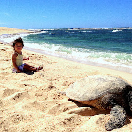 Babies and young sea turtle by Jeff Juntilla - Babies & Children Child Portraits