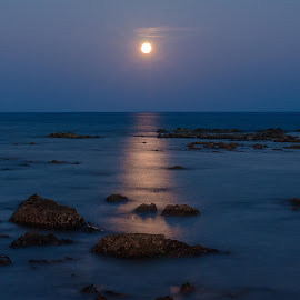 Moonrise  by Swagata Nandi - Landscapes Waterscapes ( moon, sea, evening,  )