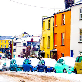 Saturated colours by Wendy Richards - City,  Street & Park  Neighborhoods ( colour, bright, snow, saturated )