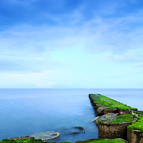 L by Dharma Jaya - Landscapes Waterscapes