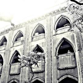 by Devyani S.Rathore - Buildings & Architecture Office Buildings & Hotels (  )