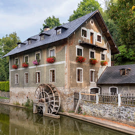 Water Mill  by Martin Namesny - Buildings & Architecture Other Exteriors ( countryside, water, on the river, water mill, old, in the river, beautiful, architecture, water whell, country, mill, village, drive, water wheel, historical, river )
