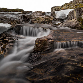 Creek by Peter Samuelsson - Nature Up Close Water