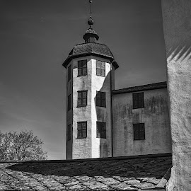 The tower by Tony Mortyr - Black & White Buildings & Architecture ( historic, castle, tower )
