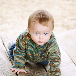 On the Move by Jenny Jones - Babies & Children Toddlers ( sweater, crawl, knit, baby, toddler, portrait )