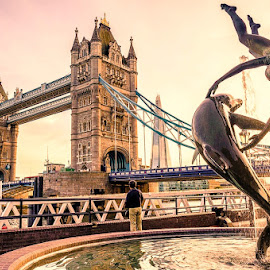london by Haddouchi Tarik - City,  Street & Park  Neighborhoods ( uk, london, sunset, bridge, city )