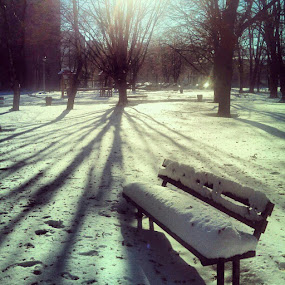 Winter morning by Mirna Abaffy - Instagram & Mobile Instagram
