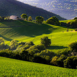 The Marche countryside by Mauro Fini - Landscapes Mountains & Hills ( mrche )