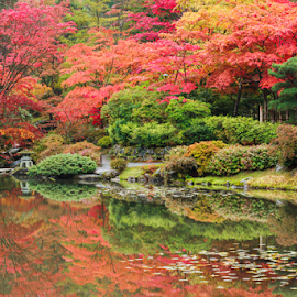 Autumn Revealed Diptych I by Briand Sanderson - City,  Street & Park  City Parks ( reflection, maples, japanese maples, japanese garden, autumn leaves, autumn, japanese gardens, still, seattle japanese garden, autumn colors, japanese, colours,  )